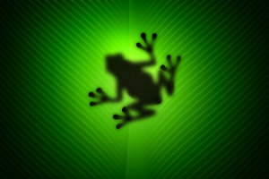 Frog 1: Silhouette of a frog. View from below the leaf !I made it entirely in Photoshop as I was learning a new concept. None of the elements in the photo are real :)I'm happy with this work . If you like it please VOTE and LEAVE A COMMENT.I'd love to see how you