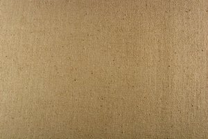 Fine Grained Canvas Texture