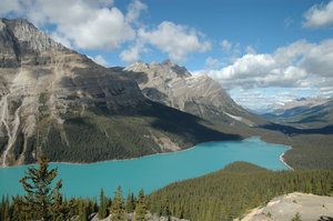 Peyto Lake: Peyto Lake (pea-toe) is a glacier-fed lake located in Banff National Park in the Canadian Rockies