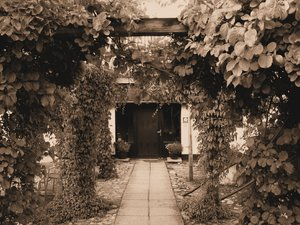 Entrance in sepia