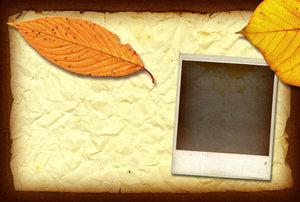 Wrinkled Paper 2