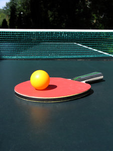 ping pong paddle: none