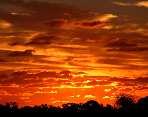 autumn sky show: autumn sunset and darkening skies