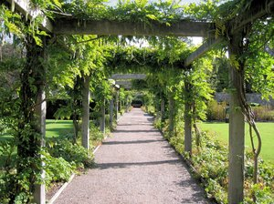 pergola: a nicely ranked pergola in the Kitchen Garden of The Loch Lomond & The Trossachs National Park in Scotland.