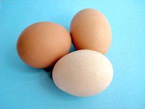 Chicken Eggs 3