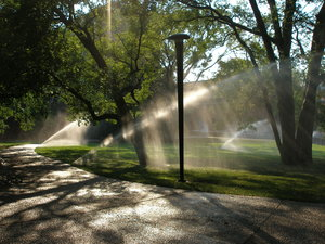 Mist on the Vanderbilt Lawn: sunlight through water mist from lawn sprinklers in summer on Vanderbilt campus