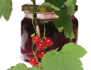red currant jam: none