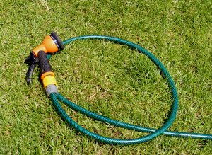 garden hose: garden hose left lying on the ground