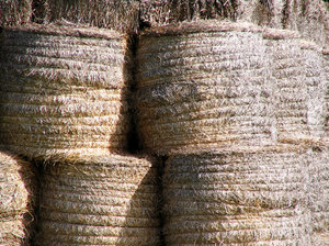 Straw Bales 3: Straw bales stacked and waiting