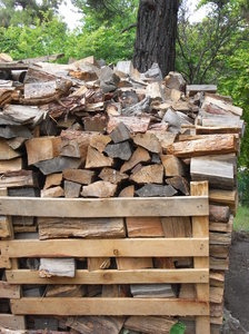 Wood pile: Wood for winter