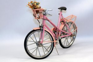 Bicycle miniature 2