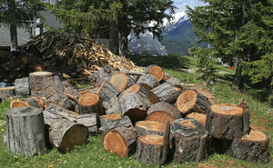 Logs: Logs for firewood in the Alps.