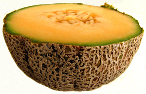 rock melon texture: the rind/skin surface of ripe rock melons