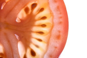 Tomato Slice Macro