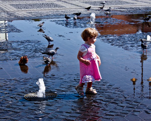 little girl with pigeons