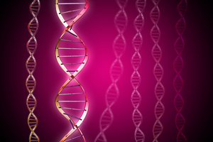 DNA molecule 6: DNA double helix illustration