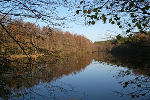 Sussex pond