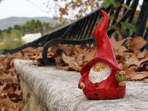 Gnome 030