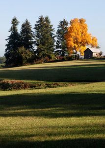 Farm in the Fall: Shot outside of Portland, Oregon in 2009.