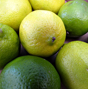 limes: bulk quantities of fresh limes