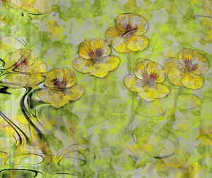 Nasturtium Abstract 2