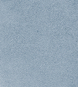 Leather Texture 8