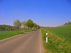 country highway in spring