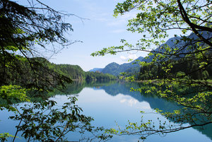 alpsee lake