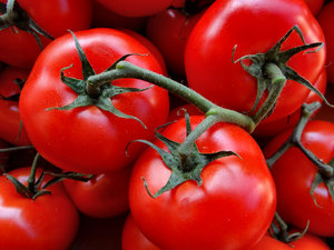 vine ripened tomatoes6: large firm standard round tomatoes in vine clusters