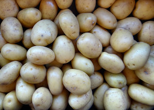 potatoes in bulk1