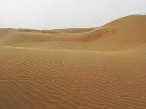 Shapotou desert