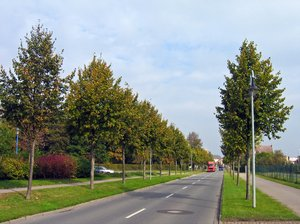 idyllic autumn street scenery: idyllic autumn street scenery in Wolgast, Germany