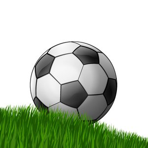 Football 2: Football on the grass - white background