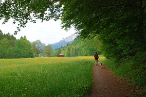 walking in bavaria
