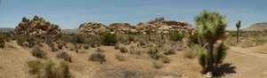Panorama Joshua Tree Nat. Park
