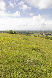 Downland