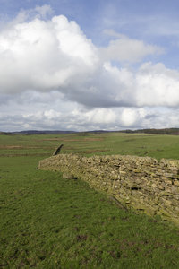 Stone wall: A drystone wall in northern England.
