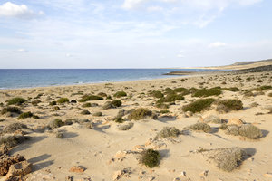 Beach like a desert: A beach with sparse maquis in northern Cyprus.