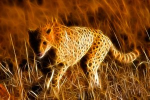 Sprinting Cheetah Abstract: Digital manipulation from a photo of mine featuring a sprinting cheetah.
