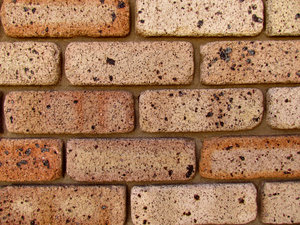 brick wall2