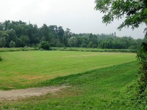 green field: a meadow near the river Olona, Lombardy, Northern Italy