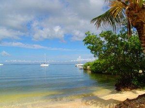 Refreshing Key Largo morning