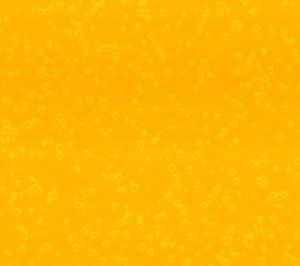 Bubbly Background Yellow