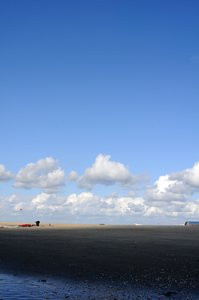 Dutch coast: Dutch North sea coast