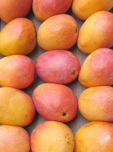 Mangoes: Mangoes on display in the fruit market