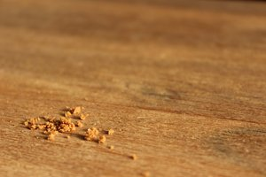 Bread Crumbs: Picture of some bread crumbs on a table