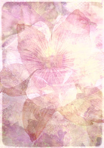 Textured Floral Collage 5