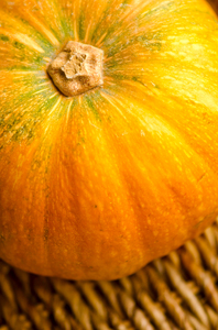 Pumpkin detail