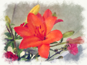 Painted Lily: One of my photos edited to look like a painting. This would make a nice framed image or card. Please use within the image licence terms.