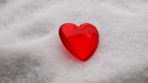 Snow heart: I love winter and I love small hearts. Suddenly I saw the combination: the small heart, gift from my son, in the snow.